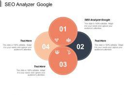 Seo Analyzer Google Ppt Powerpoint Presentation Icon Show Cpb