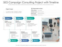 SEO Campaign Consulting Project With Timeline