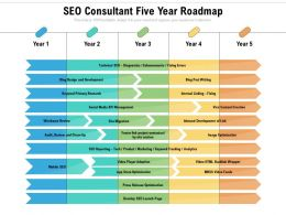 SEO Consultant Five Year Roadmap