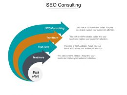 SEO Consulting Ppt Powerpoint Presentation Outline Picture Cpb