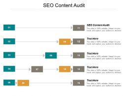 Seo Content Audit Ppt Powerpoint Presentation Pictures Portfolio Cpb