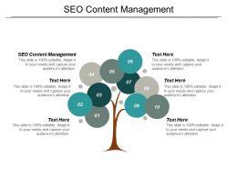 Seo Content Management Ppt Powerpoint Presentation Show Slideshow Cpb