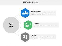 Seo Evaluation Ppt Powerpoint Presentation File Portrait Cpb