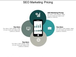 SEO Marketing Pricing Ppt Powerpoint Presentation Infographic Template Microsoft Cpb