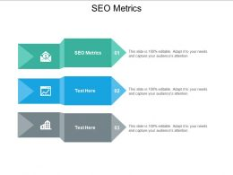 SEO Metrics Ppt Powerpoint Presentation Styles Picture Cpb