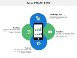 Seo Project Plan Ppt Powerpoint Presentation File Skills Cpb