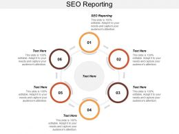 SEO Reporting Ppt Powerpoint Presentation Infographics Examples Cpb