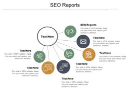 SEO Reports Ppt Powerpoint Presentation Outline Themes Cpb
