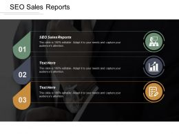 SEO Sales Reports Ppt Powerpoint Presentation Gallery Styles Cpb