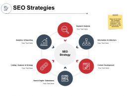 SEO Strategies Analytics And Reporting Ppt Powerpoint Presentation Gallery Deck