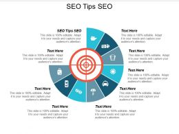 SEO Tips SEO Ppt Powerpoint Presentation Infographic Template Tips Cpb