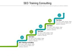 SEO Training Consulting Ppt Powerpoint Presentation Gallery Graphic Tips Cpb