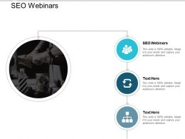 SEO Webinars Ppt Powerpoint Presentation Pictures Diagrams Cpb