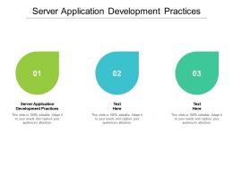 Server Application Development Practices Ppt Powerpoint Presentation Portfolio Graphics Example Cpb