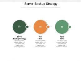 Server Backup Strategy Ppt Powerpoint Presentation Summary Microsoft Cpb