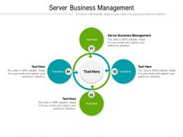 Server Business Management Ppt Powerpoint Presentation File Graphic Tips Cpb