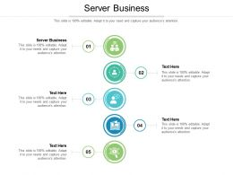 Server Business Ppt Powerpoint Presentation Styles Infographic Template Cpb
