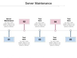 Server Maintenance Ppt Powerpoint Presentation Layouts Skills Cpb