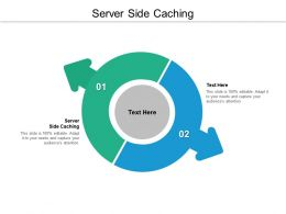Server Side Caching Ppt Powerpoint Presentation Model Examples Cpb