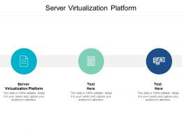 Server Virtualization Platform Ppt Powerpoint Presentation Infographics Show Cpb