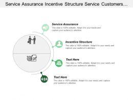 Service Assurance Incentive Structure Service Customers Final Decision