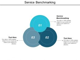Service Benchmarking Ppt Powerpoint Presentation Model Format Cpb