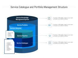 Service Catalogue And Portfolio Management Structure