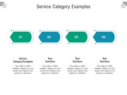 Service Category Examples Ppt Powerpoint Presentation Pictures Themes Cpb