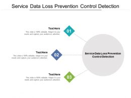 Service Data Loss Prevention Control Detection Ppt Powerpoint Presentation Outline Infographic Template Cpb