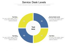 Service Desk Levels Ppt Powerpoint Presentation Layouts Professional Cpb