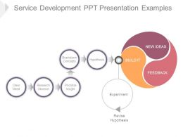 Service Development Ppt Presentation Examples
