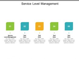 Service Level Management Ppt Powerpoint Presentation Slides Graphics Cpb