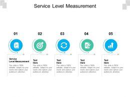 Service Level Measurement Ppt Powerpoint Presentation Pictures Portrait Cpb