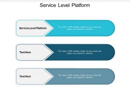 Service Level Platform Ppt Powerpoint Presentation Styles Example Introduction Cpb