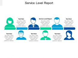 Service Level Report Ppt Powerpoint Presentation Portfolio Layouts Cpb