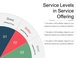 Service Levels In Service Offering Powerpoint Shapes