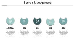 Service Management Ppt Powerpoint Presentation Themes Cpb