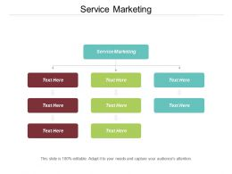 Service Marketing Ppt Powerpoint Presentation Gallery Display Cpb
