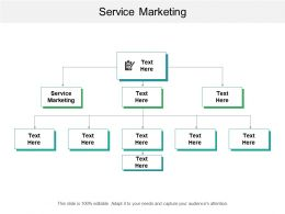 Service Marketing Ppt Powerpoint Presentation Gallery Influencers Cpb