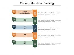 Service Merchant Banking Ppt Professional Infographic Template Cpb