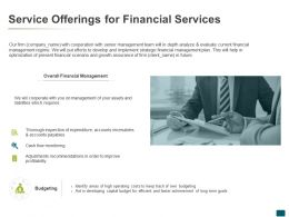 Service Offerings For Financial Services Budgeting Ppt Powerpoint Presentation