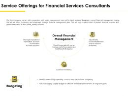 Service Offerings For Financial Services Consultants Ppt File Skills