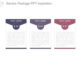 Service Package Ppt Inspiration