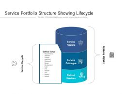 Service Portfolio Structure Showing Lifecycle