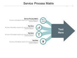 Service Process Matrix Ppt Powerpoint Presentation Inspiration Samples Cpb