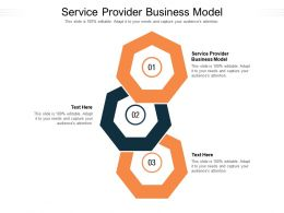 Service Provider Business Model Ppt Powerpoint Presentation Show Topics Cpb