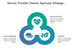 Service Provider Diverse Approach Strategic Planning Business Result