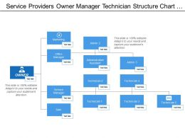 Service Providers Owner Manager Technician Structure Chart With Boxes And Icons