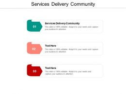 Services Delivery Community Ppt Powerpoint Presentation Professional Graphics Download Cpb