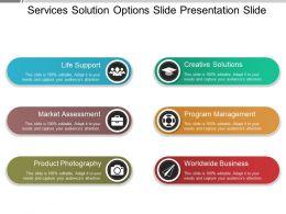 Services Solution Options Slide Presentation Slide
